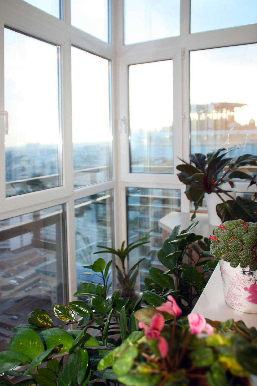 """Домашний сад на балконе. """" - карточка пользователя valentina."""